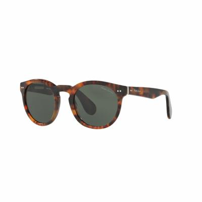 Ralph Lauren Sunglasses RL8146P49501752