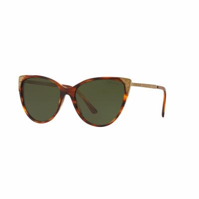 Ralph Lauren Sunglasses RL817257500771