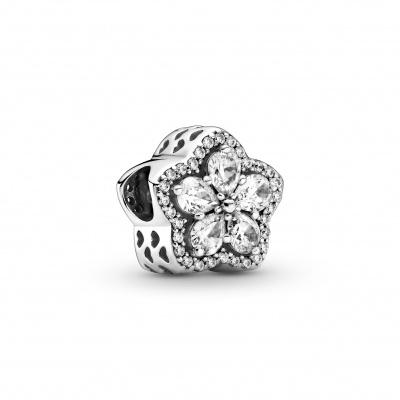 Pandora Charm 799224C01